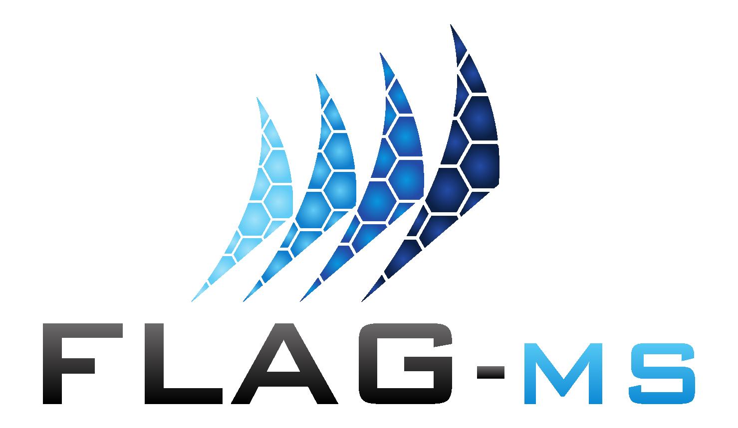 FlagMS